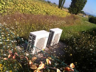 novita tariffe elettriche